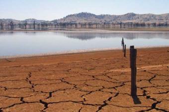 """جنوب إفريقيا تعلن حالة """"كارثة وطنية"""" بسبب أزمة الجفاف"""