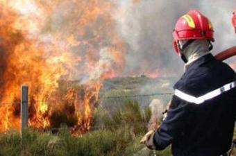 """حريق بالمنطقة الغابية """"دوار المثاليث"""" في سجنان من ولاية بنزرت"""